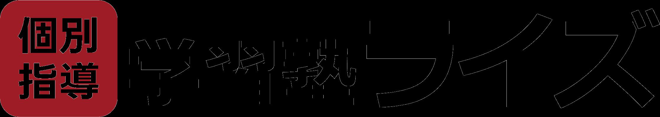 函館市元町の個別指導塾【学習塾ライズ】